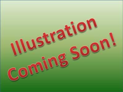 Illustration Coming Soon!