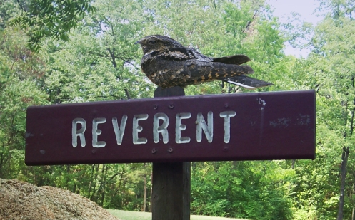 "A whippoorwill atop a sign that reads ""REVERENT"""