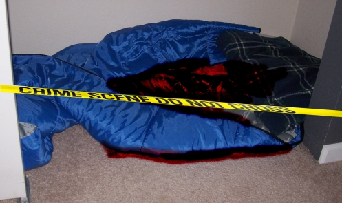 Bloody sleeping bag in a closet crime scene