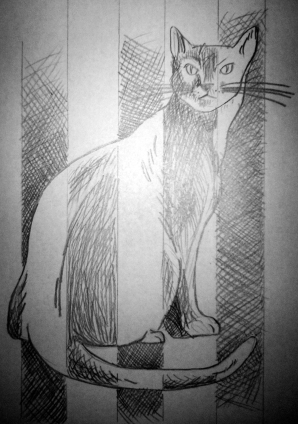 Pencil drawing of a black cat behind bars or in a crib -- in alternating stripes of good white and evil black